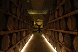 Cellar at Rio de Plata Distillery